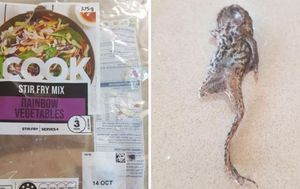 Queensland Woolworths customer 'bit into and swallowed' dead frog mixed into stir fry salad packet