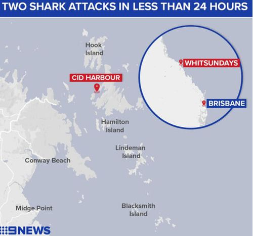 Two shark attacks have happened in the same area, leading to the cull.