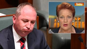 BArnaby Joyce Pauline Hanson
