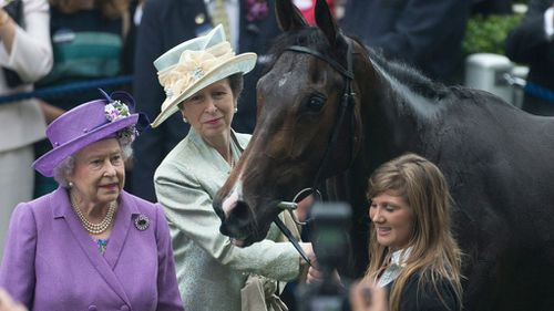 Racehorse owned by Queen fails dope test