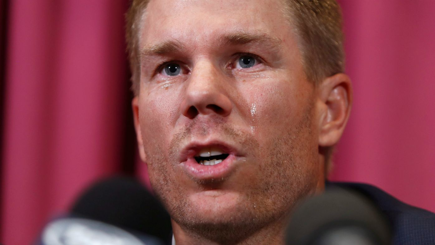 David Warner faces media