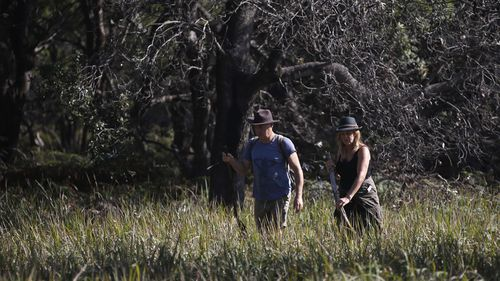Volunteers search along the Tyagarah Nature Reserve for missing Belgian backpacker Theo Hayez
