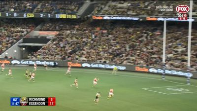 Tiger hold off late Bombers blitz in AFL