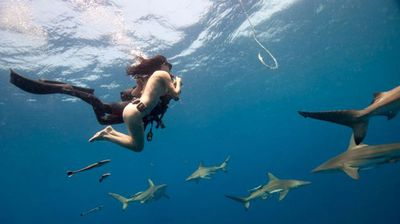 """Lesley Rochat – known as the """"shark warrior"""" – posed for a nude photo shoot with a pack of tiger sharks off the South African coast – even posing naked draped over a shark hook."""