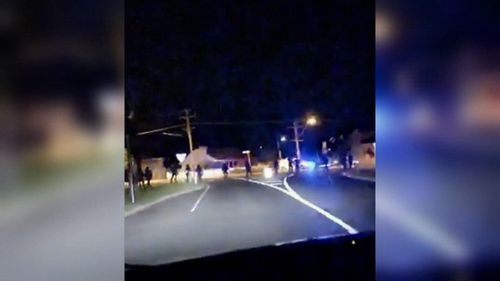 Revellers got into a large brawl on the Mornington Peninsula last night.