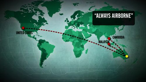 The plane's flight paths. (9NEWS)