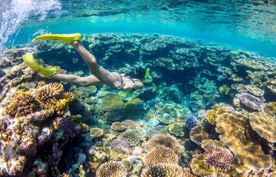 Visitors can explore Okinawa's aquamarine waters and rich marine life