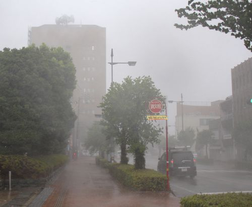 Heavy rain and strong winds are seen near Tokushima Prefectural Government building in Tokushima.