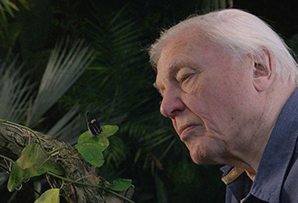 David Attenborough's Micro Monsters