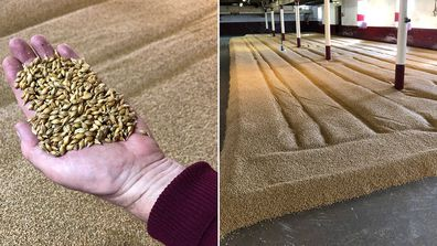 On the tour you will learn how whisky is made, including how barley is malted.