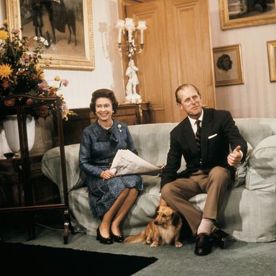 A royal staff member once gave the dogs gin