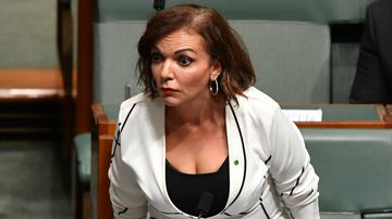 Labor MP produces 'proof' of citizenship status