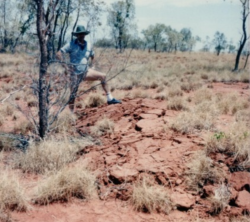 The Tennant Creek quakes caused the surface of the outback to rupture.