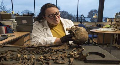 Archaeologist examines skeleton after it was pulled from London's River Thames