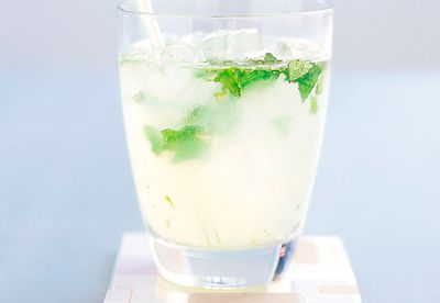 Lime and mint spritzer