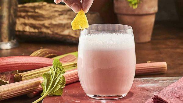 Warner's Rhubarb Gin Sour