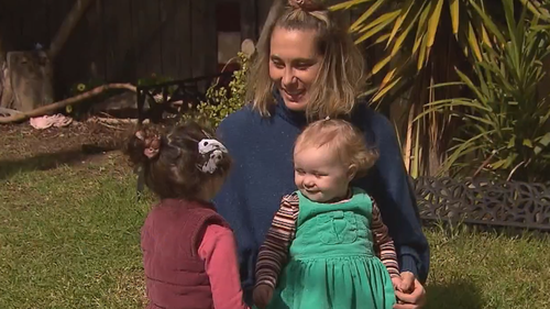 Thieves have stolen nearly $500 worth of play equipment from the front yard of a Melbourne home.