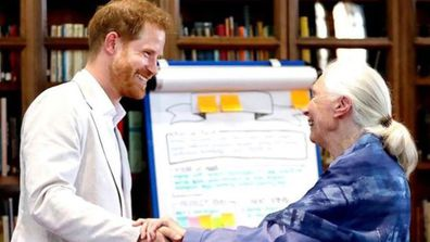 Prince Harry agrees to odd request from Dr Jane Goodall