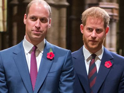 Prince William Prince Harry Westminster Abbey Remembrance Day service 2018