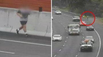 Sydney M2 Motorway jogger road safety