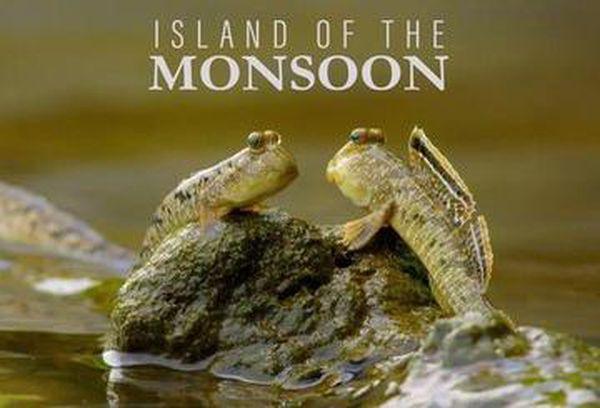 Island of the Monsoon