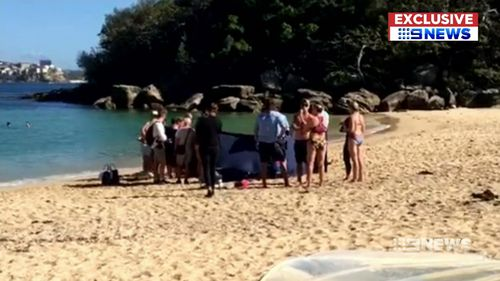 Beachgoers rushed to the aid of 65-year-old Wayne Southwell last month when he collapsed on Sydney's Shelly Beach (Supplied).