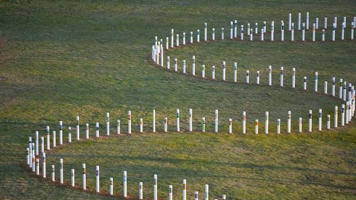 353 decorated white poles along the shore of Lake Burley Griffin in Canberra, bearing the name of people who drowned when the overloaded boat carrying asylum seekers went down in the Indian Ocean.