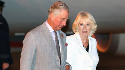 The royals touched down in Sydney late yesterday evening ahead of Remembrance Day ceremonies in Canberra today. (AAP)