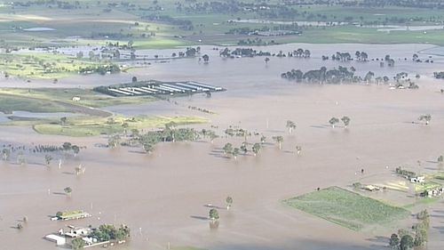 The Logan River reached 14.76m just after 5.30am. (9NEWS)