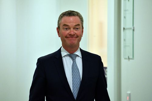 Christopher Pyne has defended Peter Dutton's intervention to grant visas to au pairs, saying the Home Affairs minister followed ministerial processes