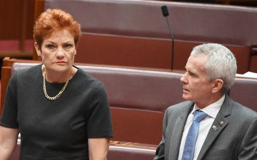 Intense lobbying behind One Nation's Trump tickets coup