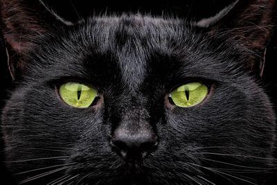Get superstitious