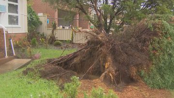 Damage in Chester Hill, Sydney