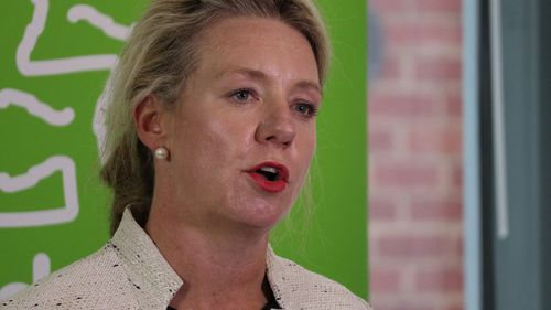 Senator Bridget McKenzie wants to see a new task force set up quickly. Picture: AAP