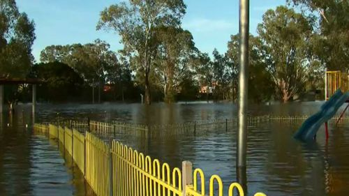 The Murray River is expected to peak later this week. (9NEWS)