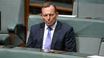 Tony Abbott was behind the leadership coup, Julia Banks has said.