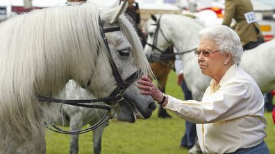 Her Majesty with her horse 'Balmoral Erica' after it came second at the Royal Windsor Horse Show at Home Park on May 17, 2014.