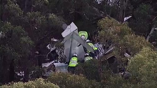 One dead and one injured in light aircraft crash south-west of Sydney
