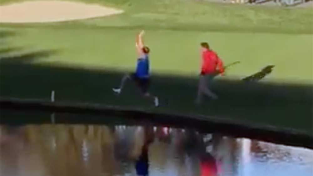 Golf: Fan puts on a show at Torrey Pines