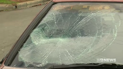 Witnesses say more than a dozen cars were smashed by the man who allegedly went on a rampage for over an hour.
