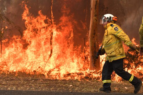 Rural Fire Service (RFS) firefighters are seen by containment lines at the Three Mile Fire in the suburb of Kulnura on December 10, 2019 on the Central Coast, Australia.  (Photo by Sam Mooy/Getty Images)