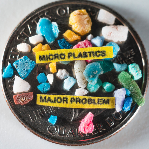Sunlight, wind, waves and heat break plastic down into tiny fragments called microplastics.