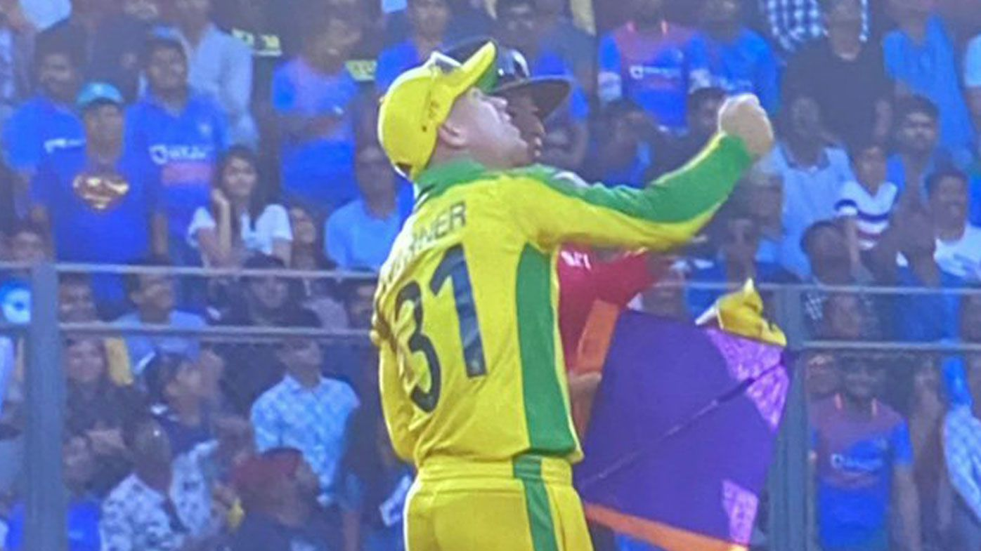 David Warner points to the sky after a kite falls on the pitch