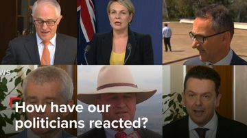 How have politicians reacted to the High Court citizenship decision?