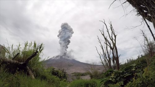 Indonesia's Mount Sinabung has erupted many times in recent years. (Reuters)