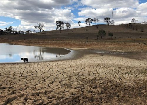 A dry dam in Wollondilly, NSW due to the intense drought.