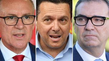 Labor Premier Jay Weatherill, SA-BEST leader Nick Xenophon and Opposition Leader Steven Marshall. (AAP)