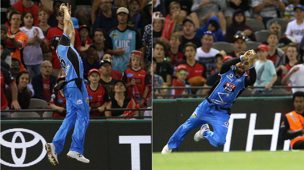 Adelaide Strikers celebrate after 'greatest outfield catch ever taken'