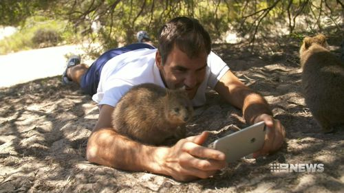 Federer was took the chance to make nice with a quokka. (9NEWS)