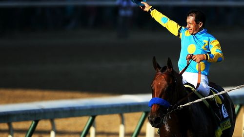 American Pharaoh storms home in Kentucky Derby